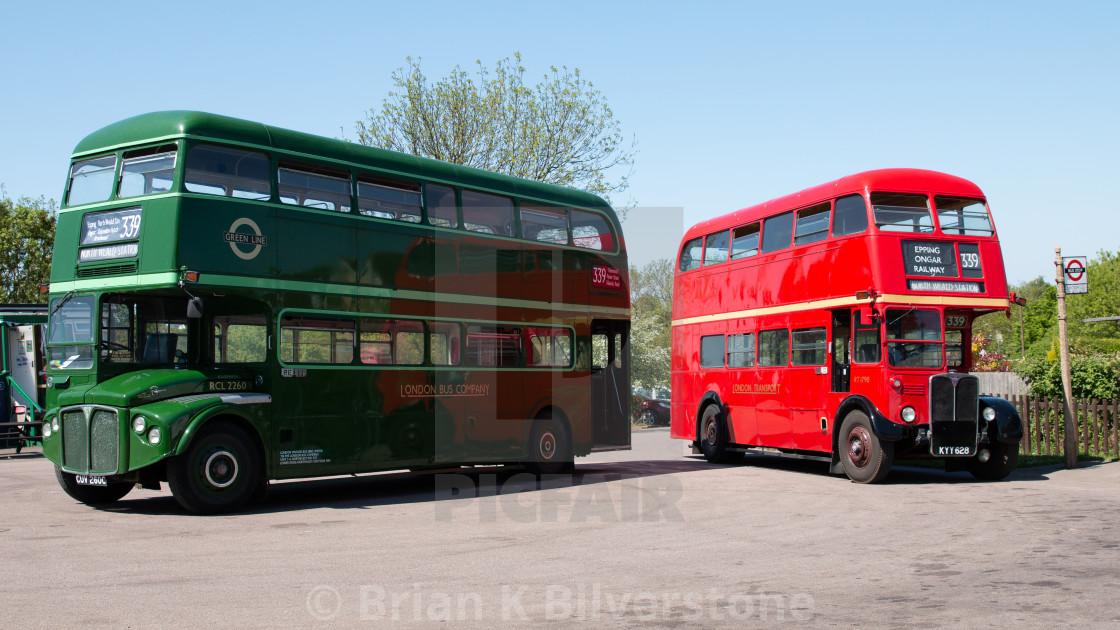 """Buses Posing"" stock image"