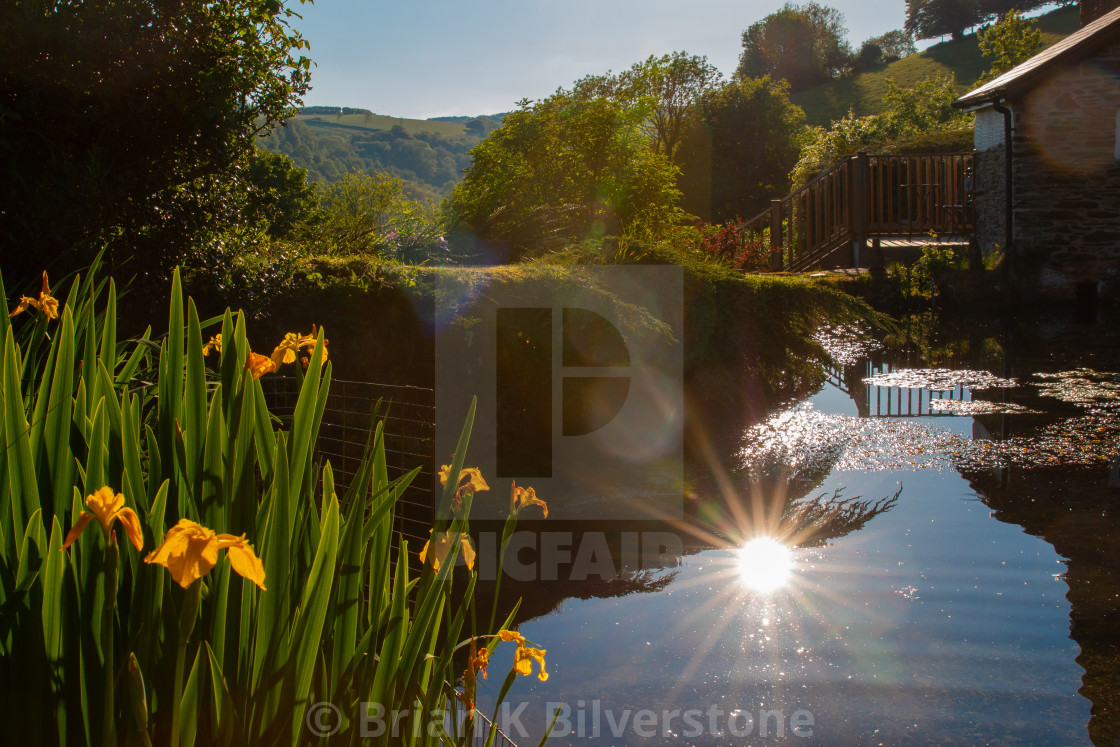"""Exmoor Evening Pond"" stock image"