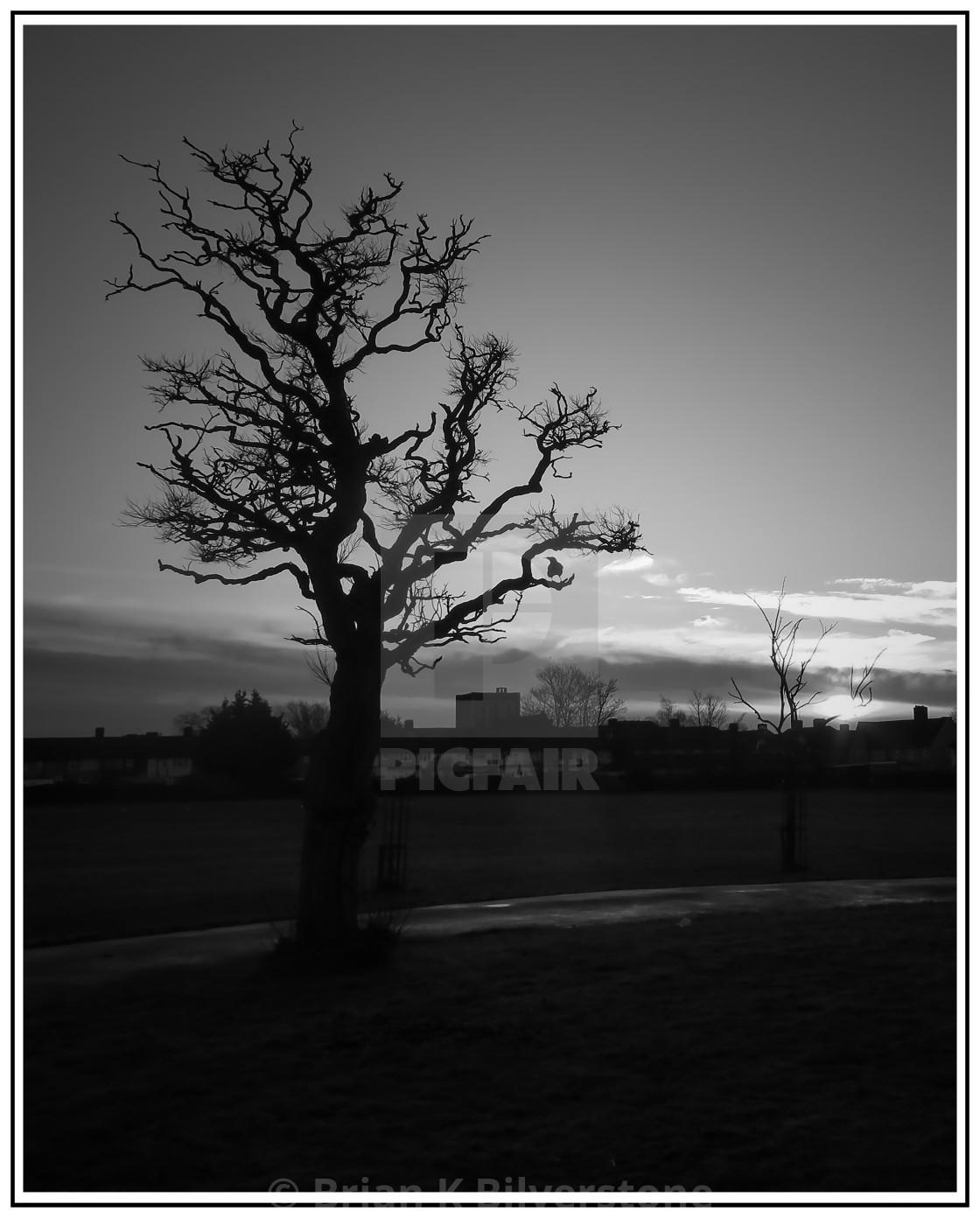 """""""Valence at Dawn"""" stock image"""