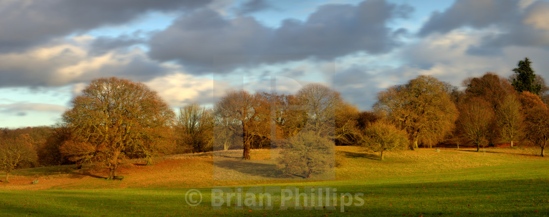 """""""Weald Country Park"""" stock image"""