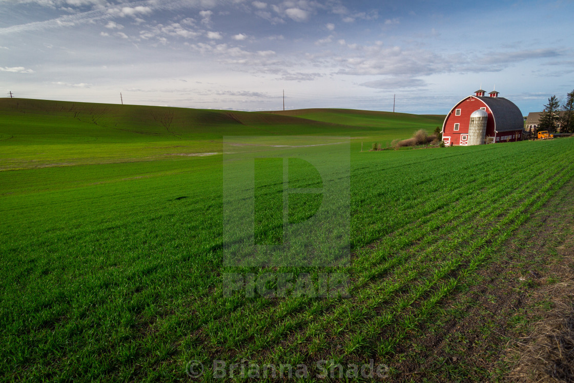 """Red barn in a verdant green field"" stock image"