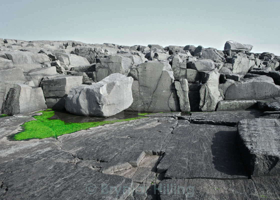 """Rocks with green algae."" stock image"