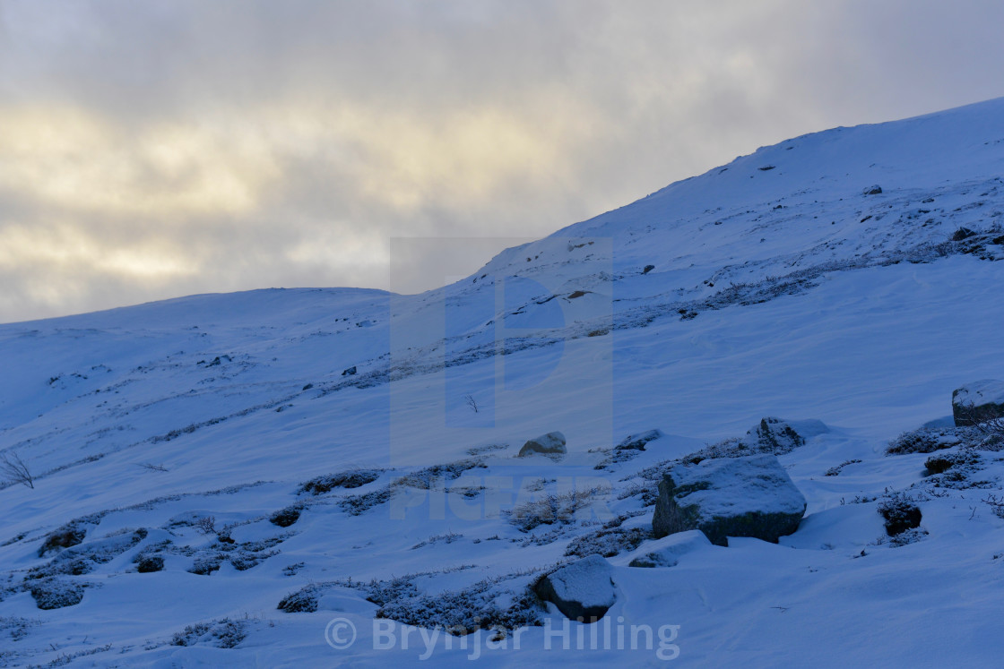 """Arctic landscape in winter light"" stock image"