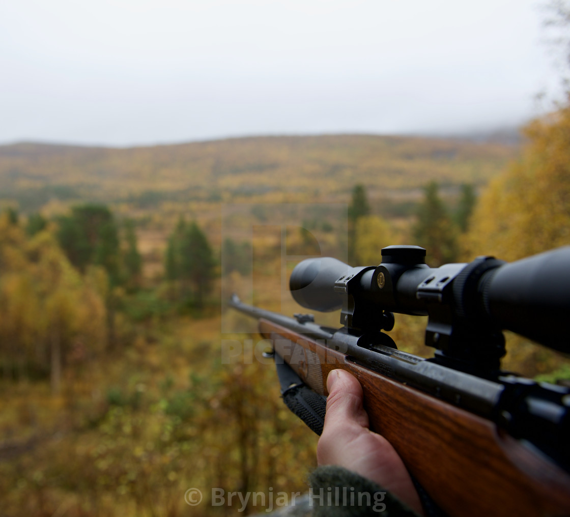 """Hunter waiting for moose"" stock image"