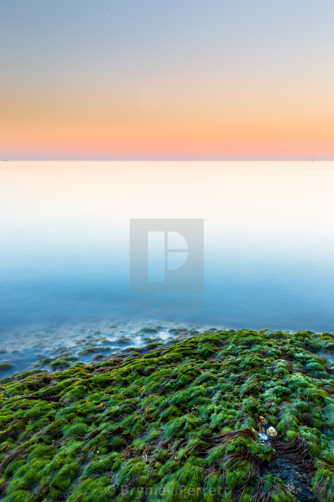 """Green Shores"" stock image"