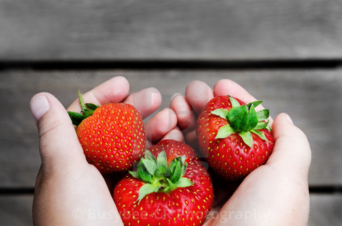 """Strawberry heart"" stock image"