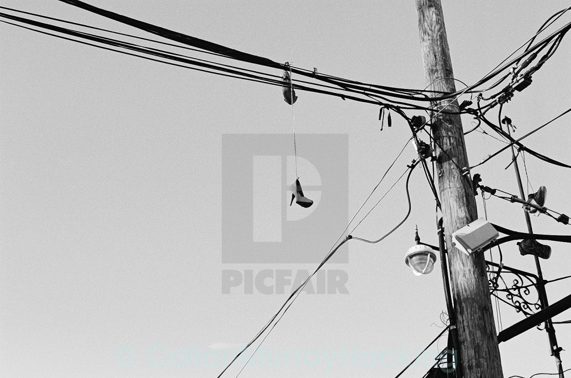 """""""Loubie's On The Wire"""" stock image"""
