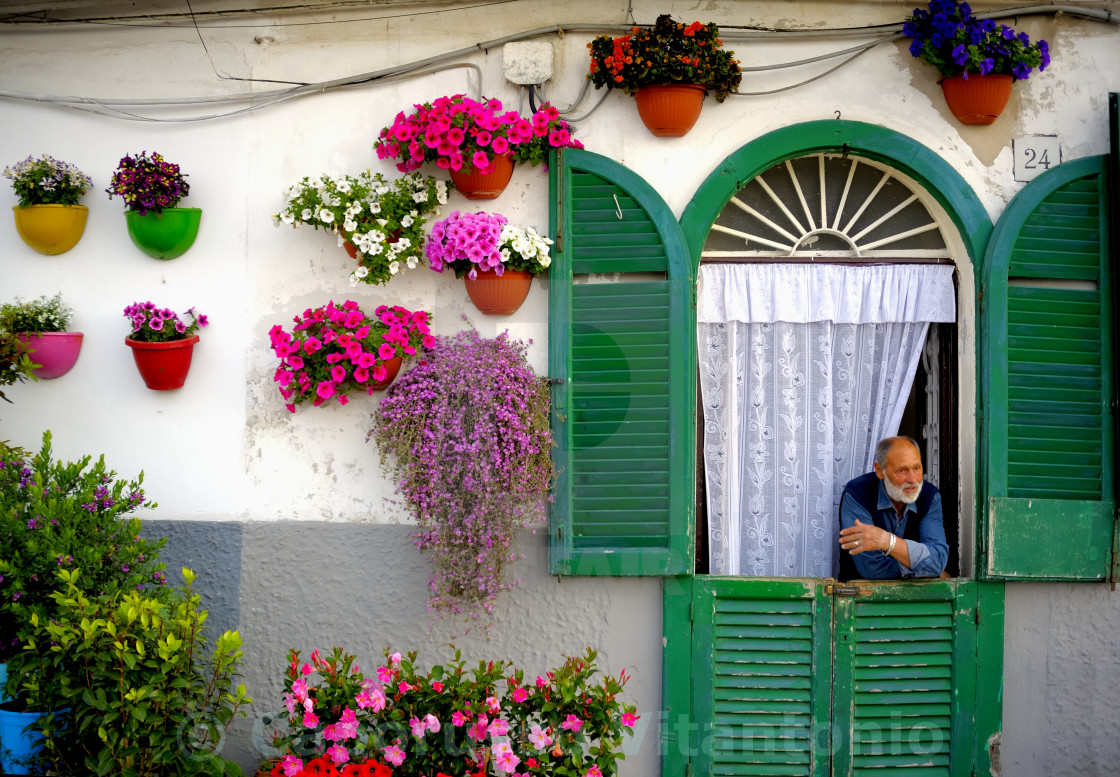 """Bari, Italy. May 9, 2015: man looking out the door of his house with the facade decorated with colorful flower pots"" stock image"