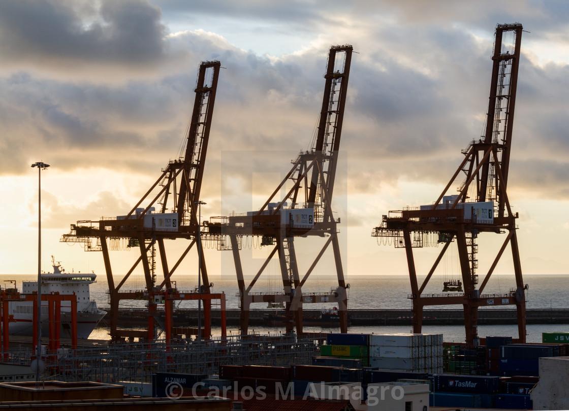"""Cranes at sunrise"" stock image"