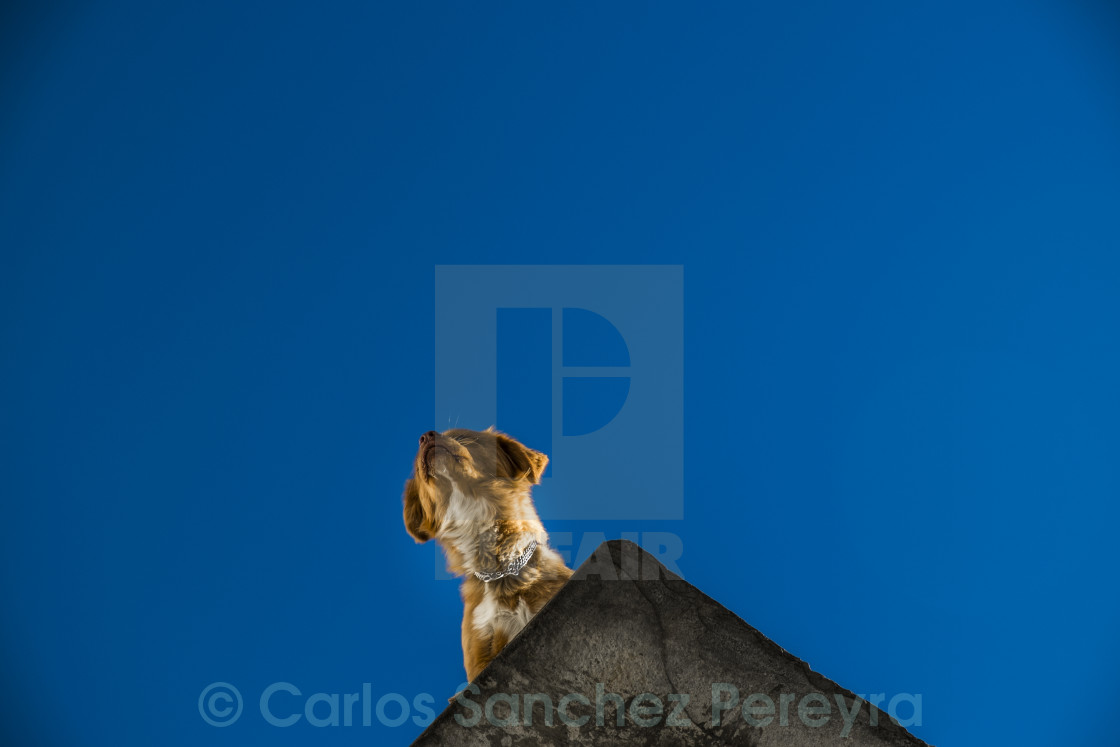 """Las Alpujarras, Andalusia, Spain"" stock image"