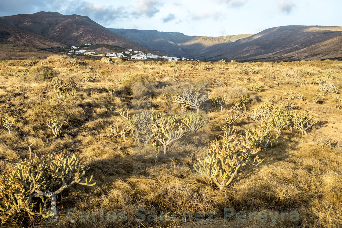 """Landscape in Lanzarote, Canary Islands, Spain"" stock image"