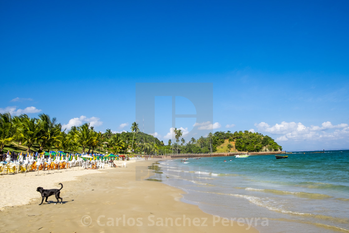 """Tropical paradise on the island of Frades"" stock image"