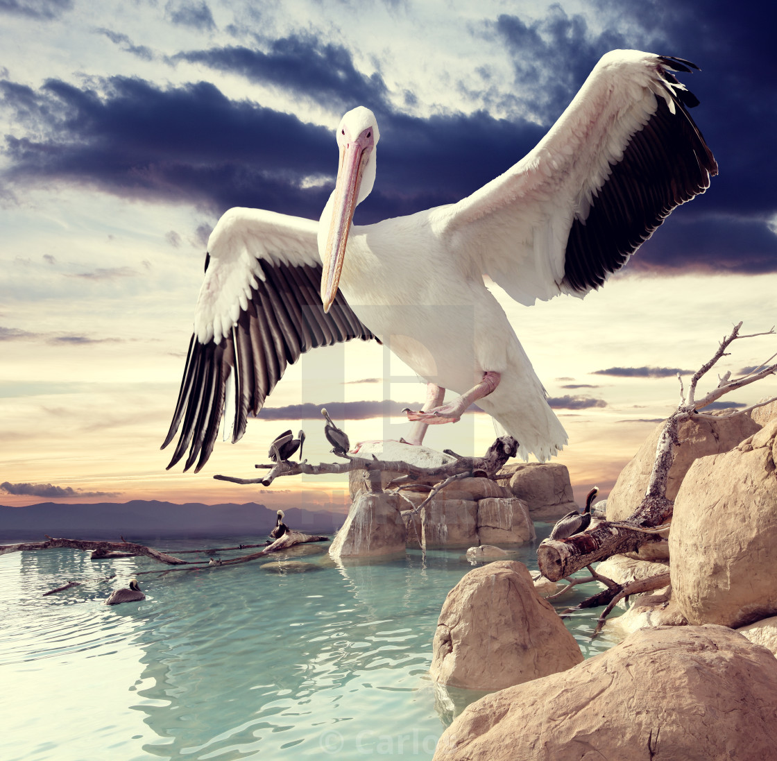 """""""Surreal landscape and birds"""" stock image"""