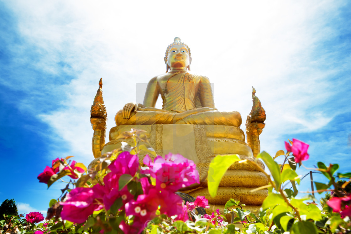 """Exotic travels and adventures .Thailand trip.Buddha and landmark"" stock image"