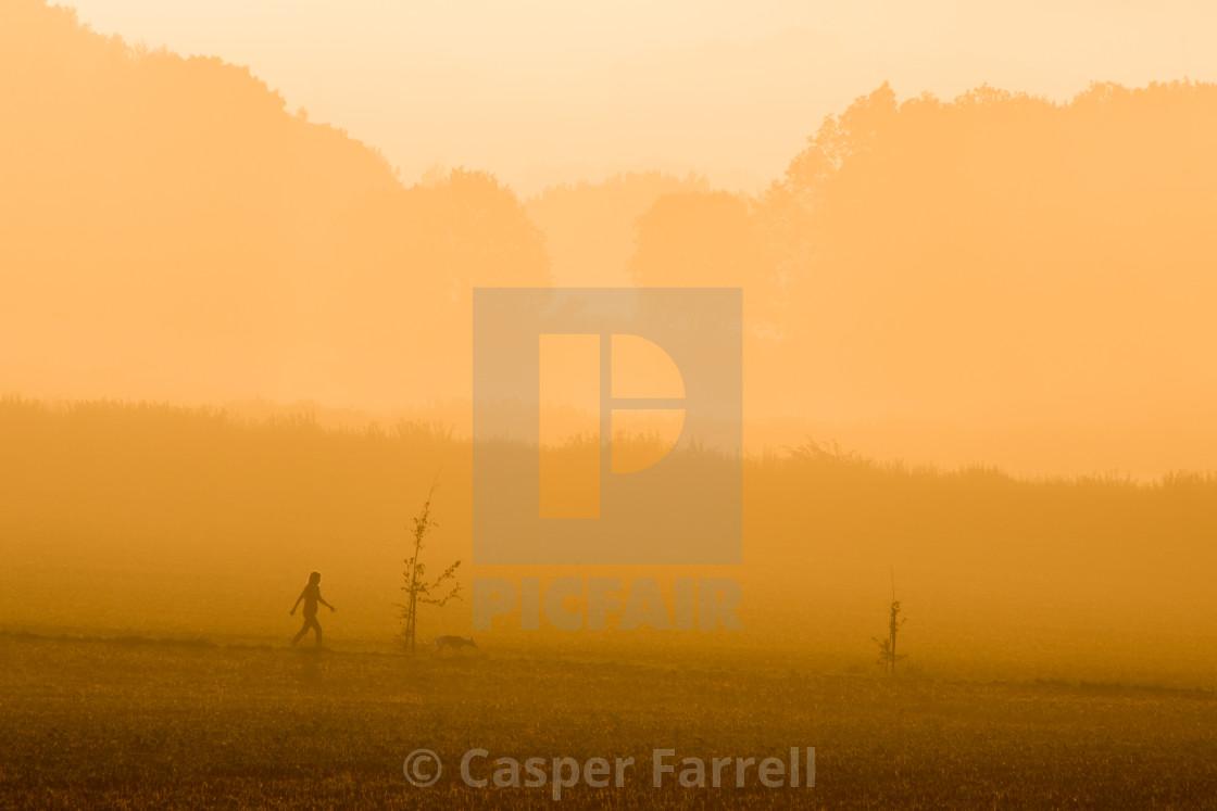 """Sunrise Fog Dog Walker"" stock image"