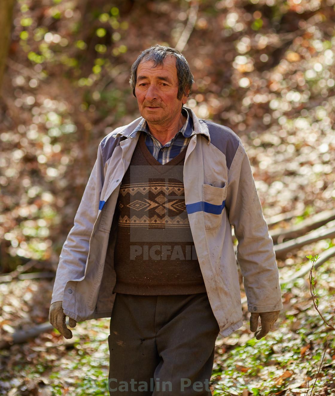 """Senior woodcutter"" stock image"