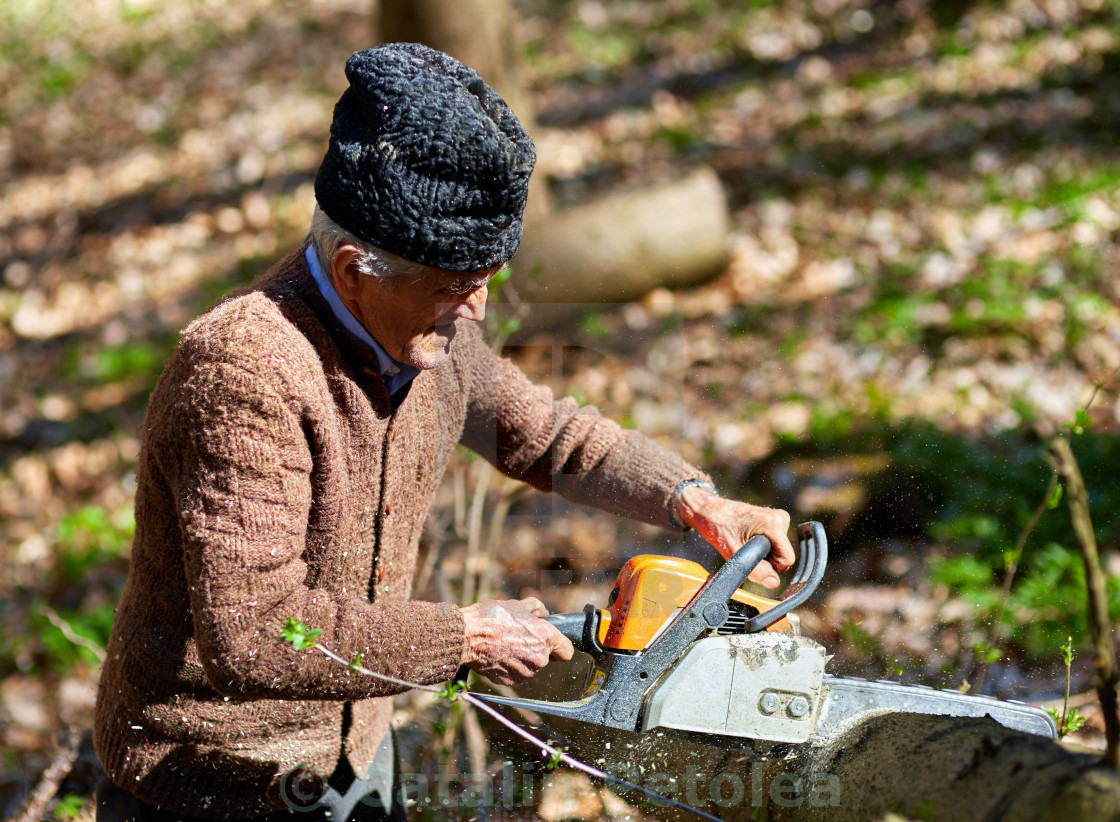 """""""Old man cutting down trees"""" stock image"""
