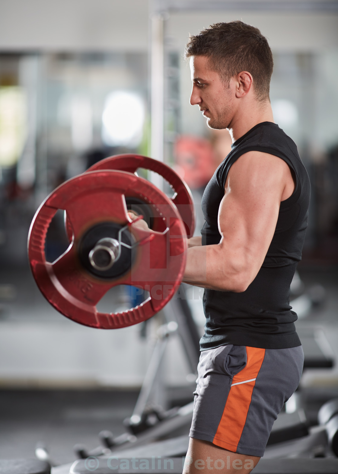 """Barbell biceps curl"" stock image"