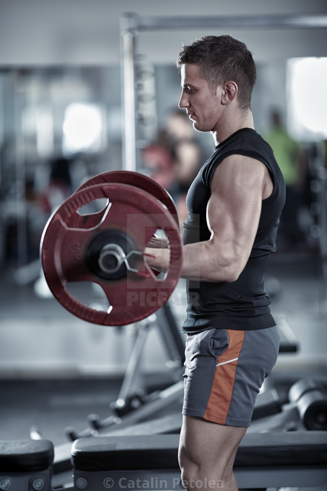 """Man doing biceps curl"" stock image"