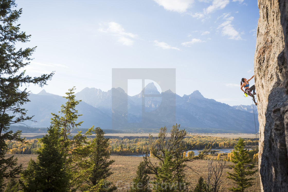 """Aicacia Climbing at Blacktail Butte #1"" stock image"