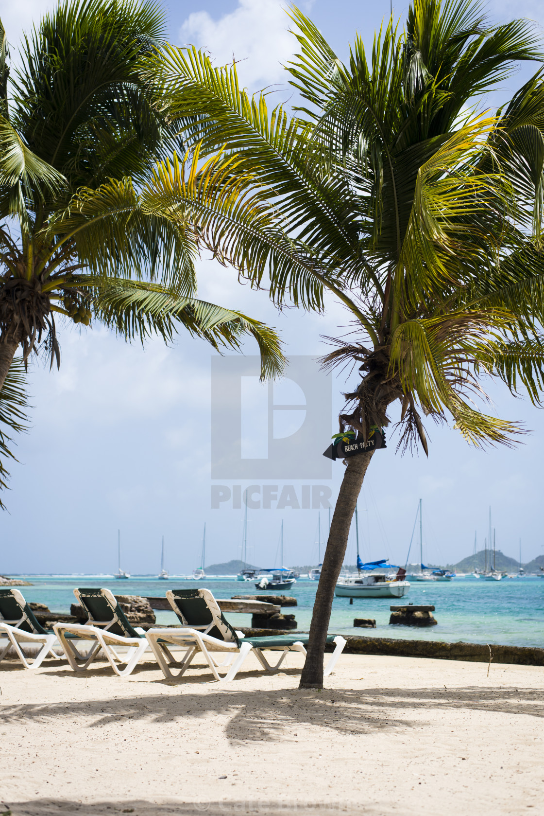 """Details of Caribbean"" stock image"