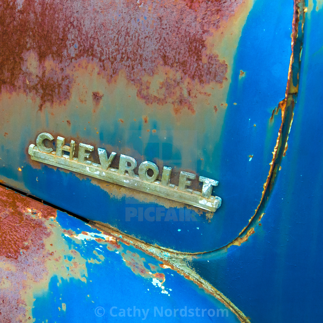 Old Rusty Chevrolet Fender License Download Or Print For 12 40 Photos Picfair