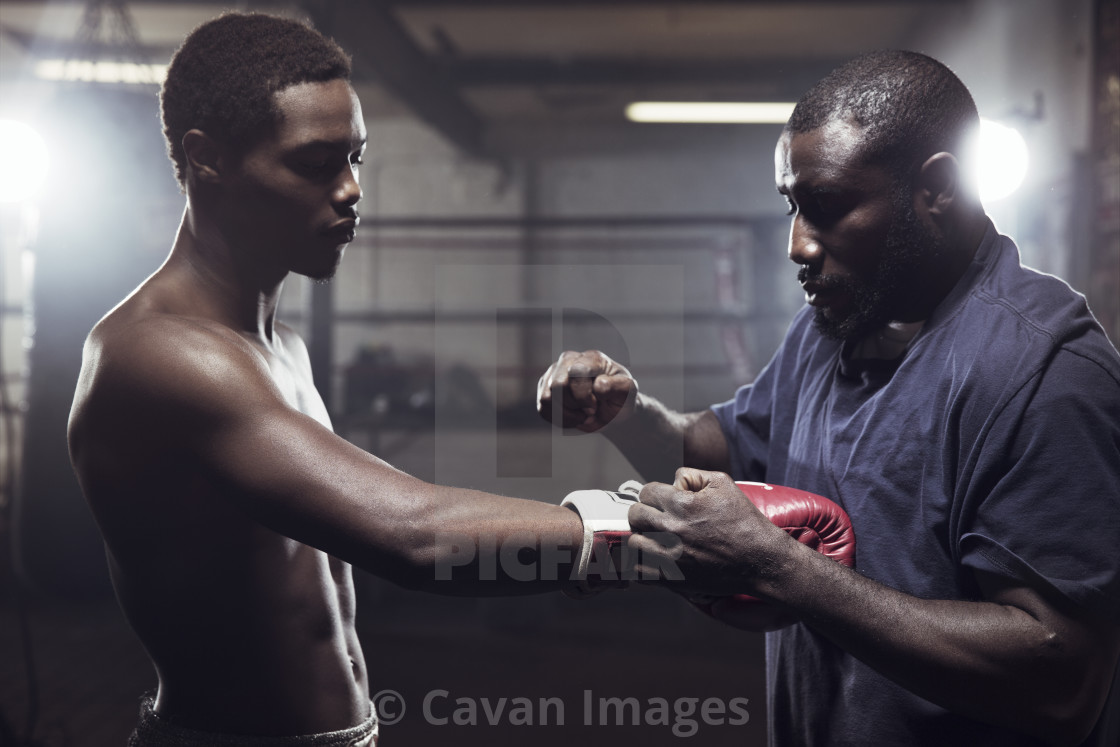 """""""Trainer with boxer in gym"""" stock image"""