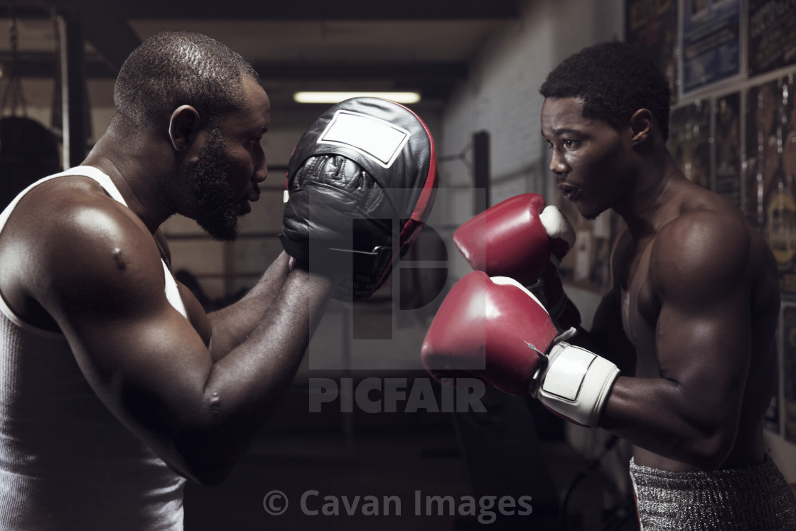 """""""Trainer guiding boxer for boxing in gym"""" stock image"""