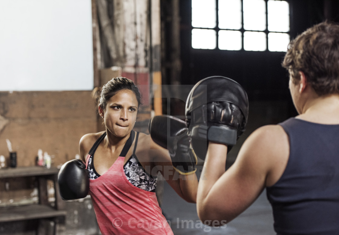 """""""Determined female boxers practicing in health club"""" stock image"""
