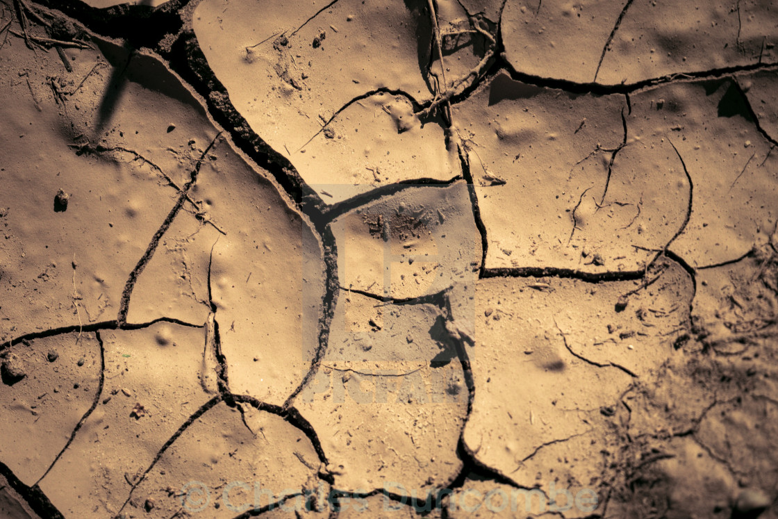 """Cracks in the earth (dry"" stock image"