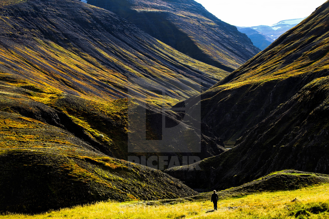 """Icelandic Canyon"" stock image"