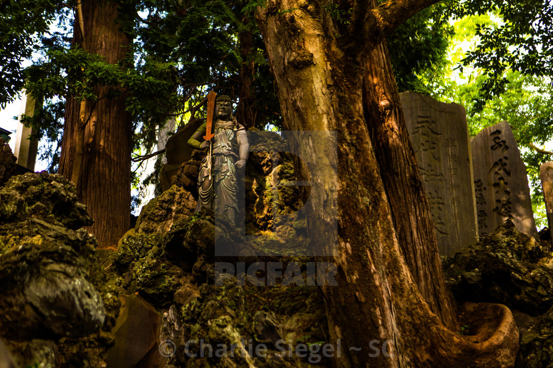 """Fudo Myoo Buddhist Statue in Naritasan Japan"" stock image"