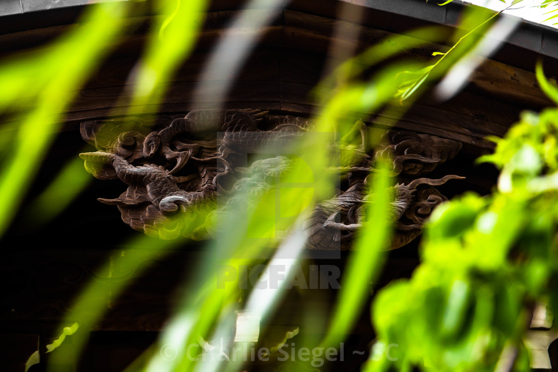 """Wooden Japanese Dragon with Willow Branches Blowing in the Wind"" stock image"