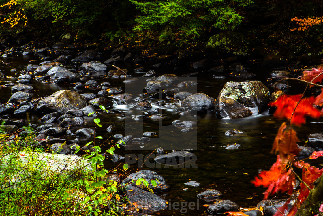 """Water Flowing over Stones in Autumn"" stock image"