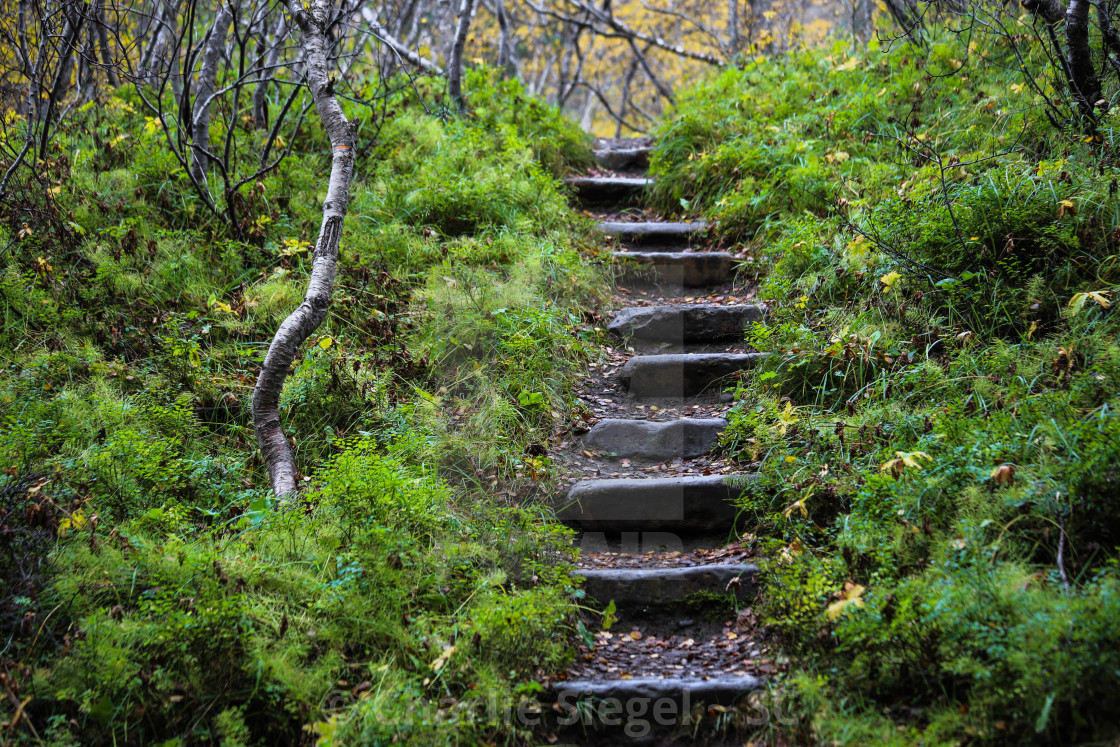 """Stone Staircase in Asbyrgi Iceland"" stock image"