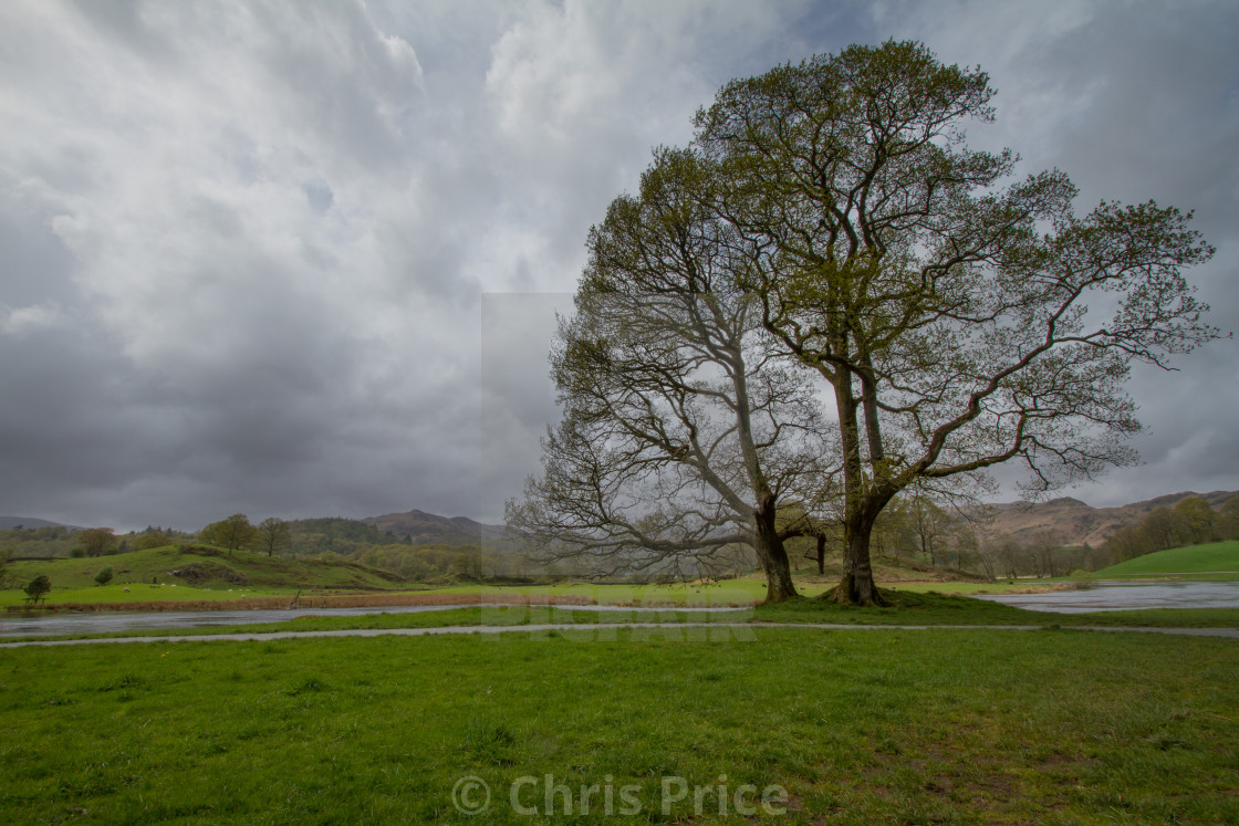 """Wray Castle"" stock image"