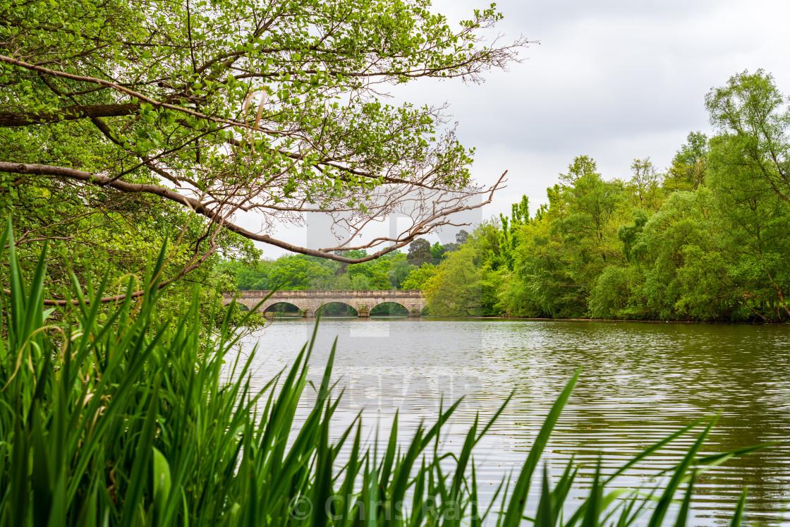 """Virginia Water Lake at Virginia Water, Windsor Great Park, Berkshire, England"" stock image"