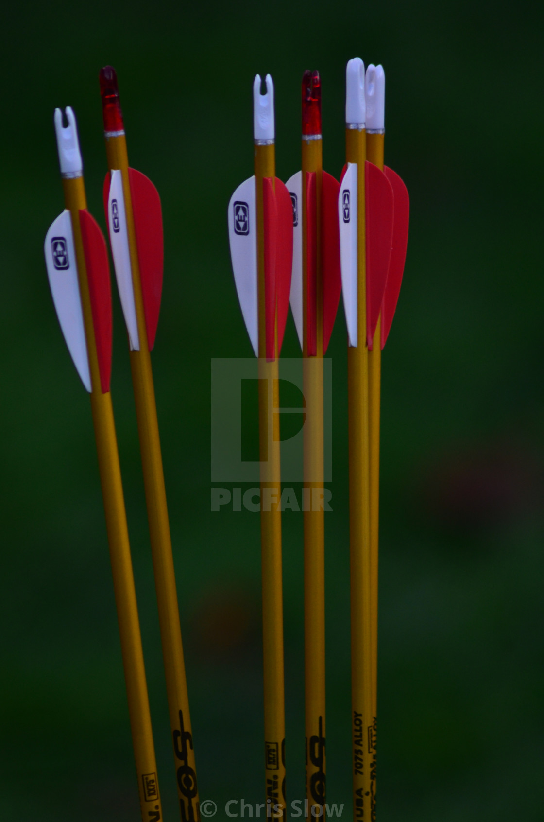 """Red and White Arrows."" stock image"