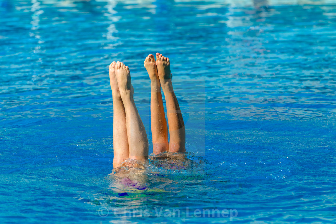 """Aquatic Synchronised Swimmers Underwater"" stock image"