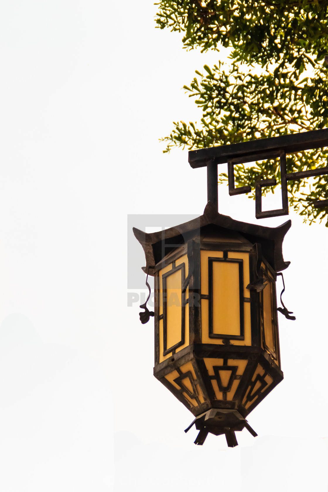 Beautiful Old Yellow Chinese Lantern Lamp Under Tree On The White Isolated License Download Or Print For 1 24 Photos Picfair