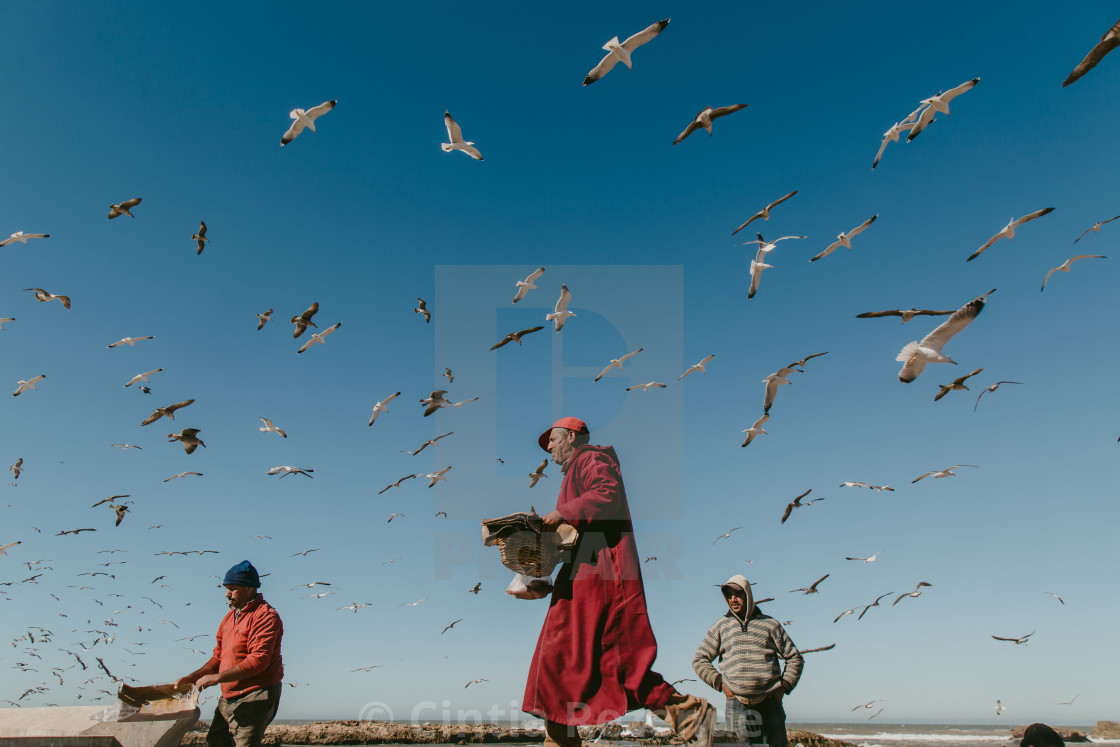 """Essaouira port city"" stock image"
