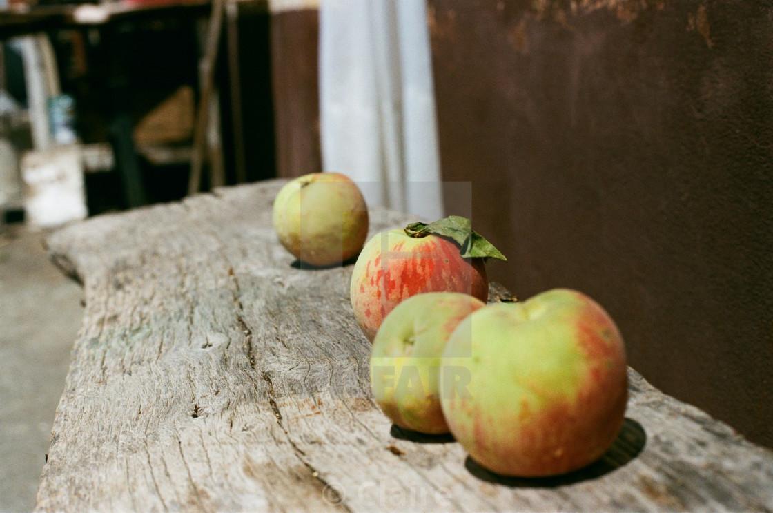 """""""Peachy"""" stock image"""