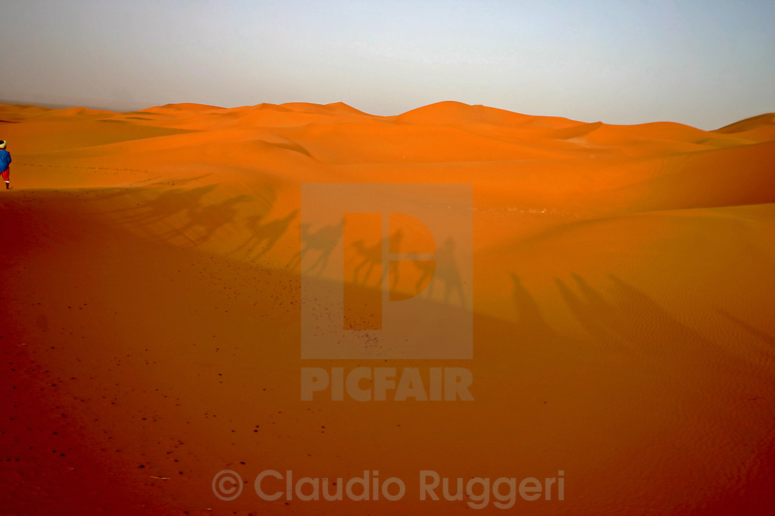 """Shadows in the sand"" stock image"