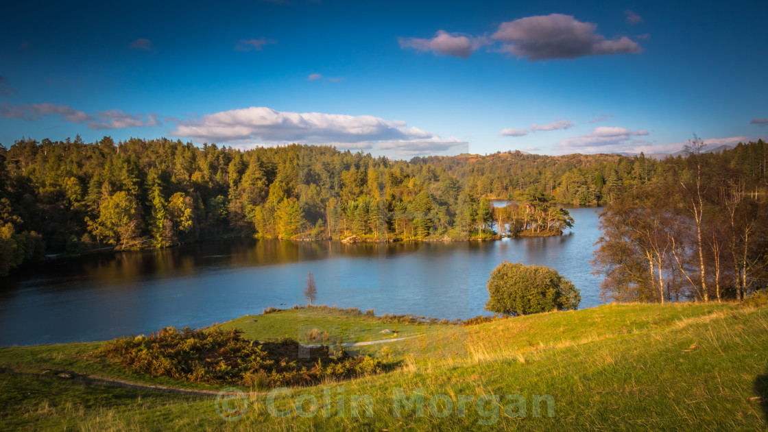 """""""Tarn Hows in the Lake District National Park"""" stock image"""