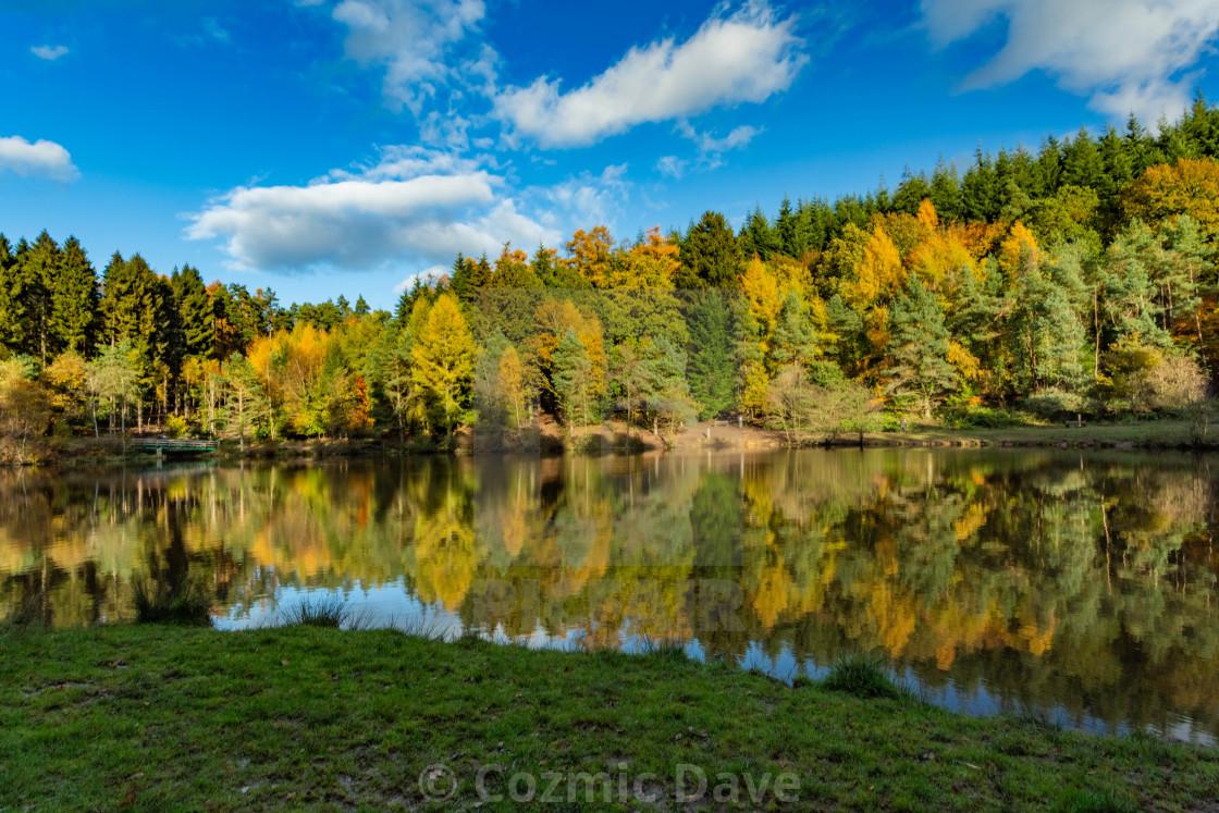 """""""Mallards Pike Lake 1"""" stock image"""