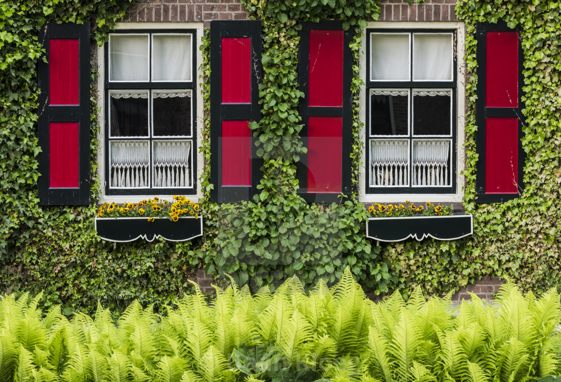 House With Red Shutters Giethoorn License Download Or
