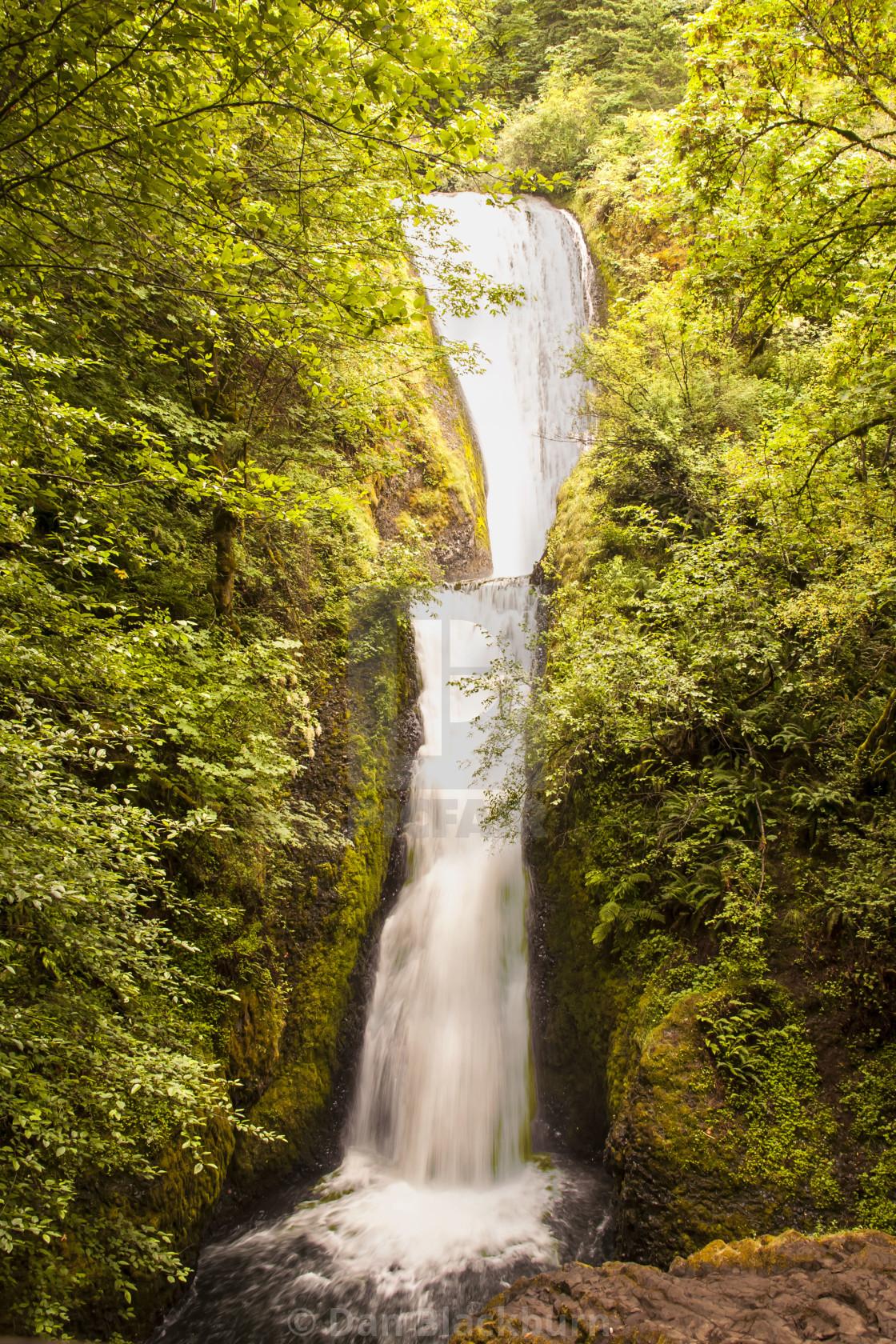 """Multnomah Falls in Full Activity"" stock image"