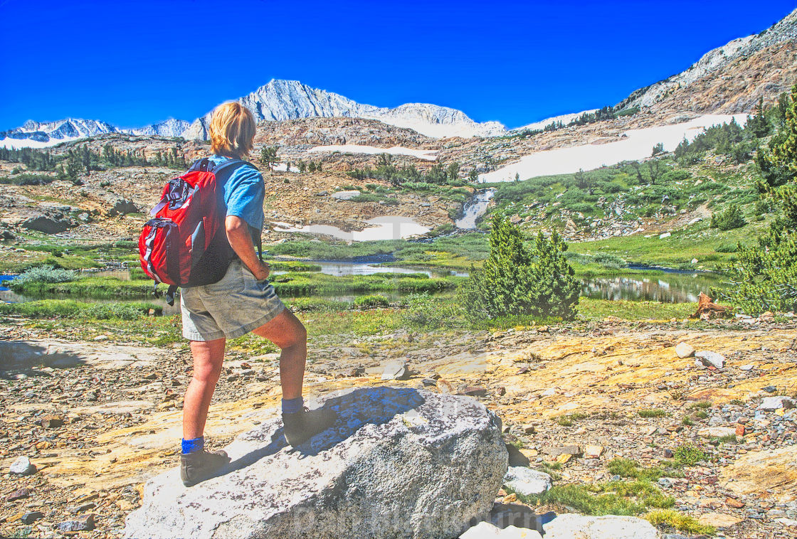 """""""Woman Hiker in the mountains of the Hoover Wilderness"""" stock image"""