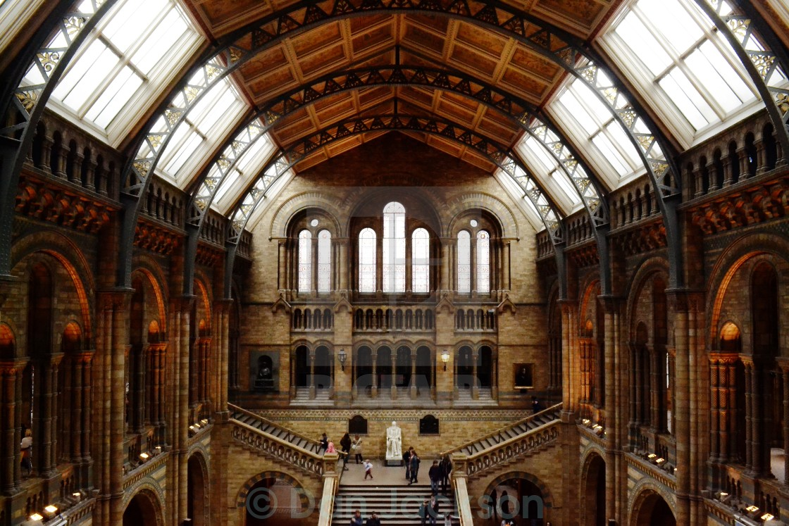 """National History Museum"" stock image"