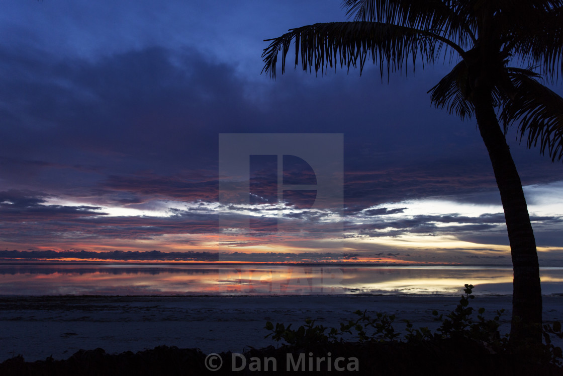 """""""Silhouette of palm tree over sunrise and beach with colorful clouds"""" stock image"""